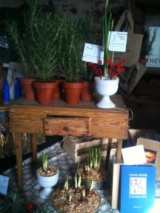 The Kitchen Potager Holiday Items